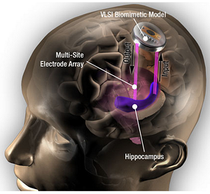 biomimetic device that mimics signal processing function of hippocampal neurons