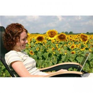 editing a website in a field of sunflowers